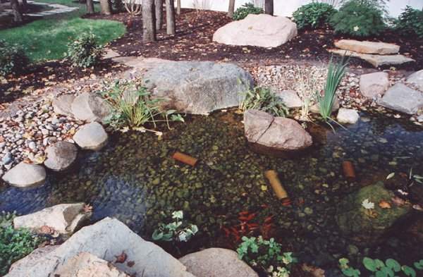 Waterfall, Stream, & Fish Pond At Lindsey Woods In Linworth